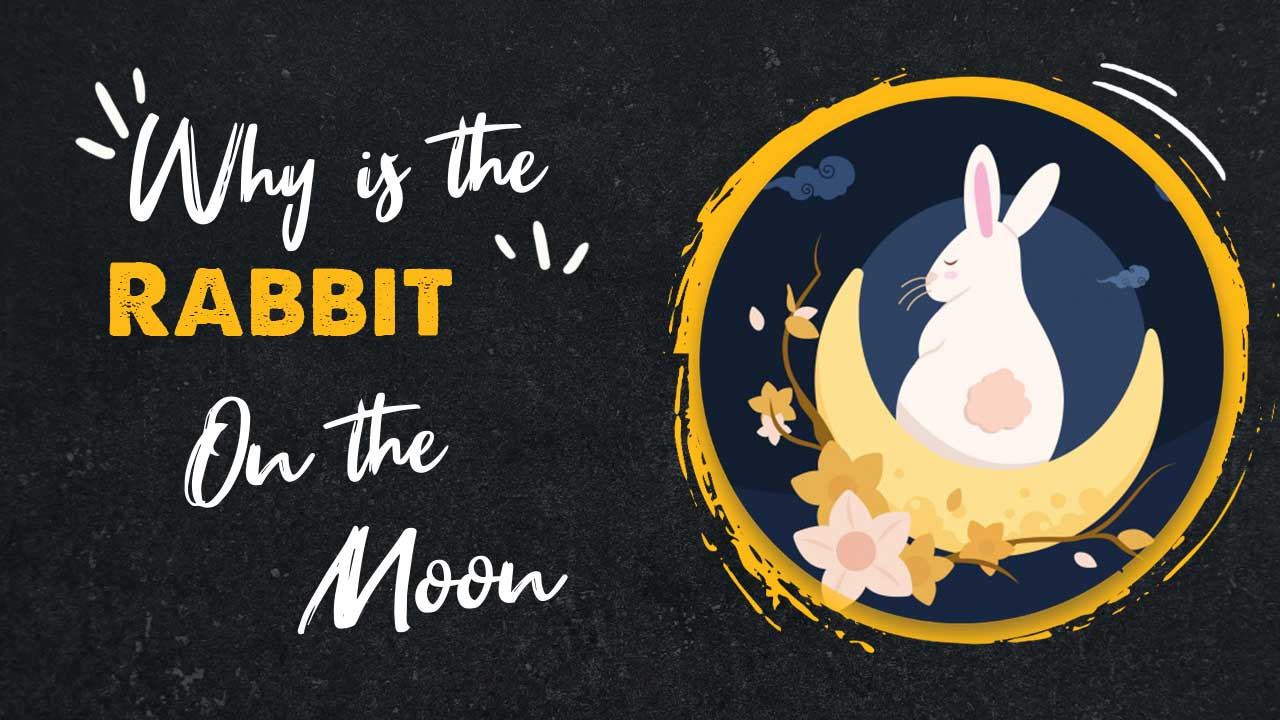 why is the rabbit on the moon